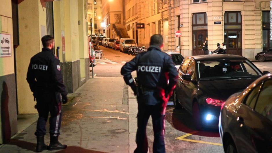 One person dead, several injured in Vienna 'terror attack'